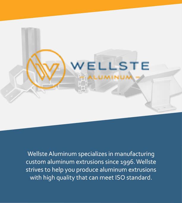 Custom Aluminium Extrusion-Tab's right